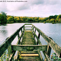 Buy canvas prints of 'On Osbournes Pond' by Rob Booth