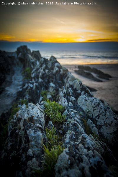 Rocks On Croyde Bay Beach Canvas Print by shawn nicholas