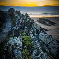 Buy canvas prints of Rocks On Croyde Bay Beach by shawn nicholas