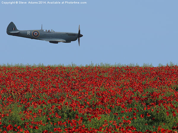 Spitfire Canvas print by Steve  Adams