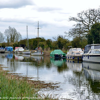 Buy canvas prints of the chelmer and blackwater navigation canal by linda cook