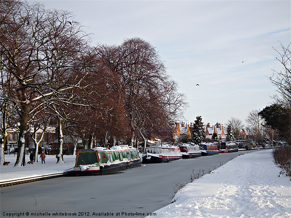 Frozen Canal Canvas print by michelle whitebrook