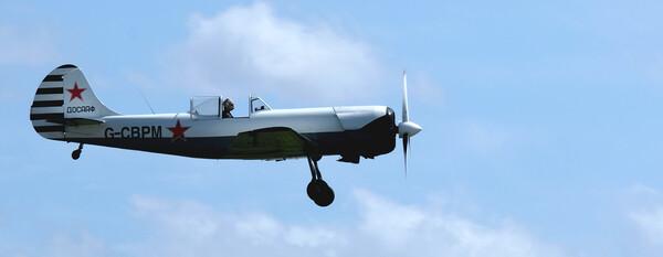 Yakovlev Yak-50 G-CBPM Framed Mounted Print by Jacqui Farrell