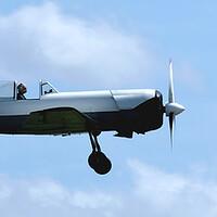 Buy canvas prints of Yakovlev Yak-50 G-CBPM by Jacqui Farrell