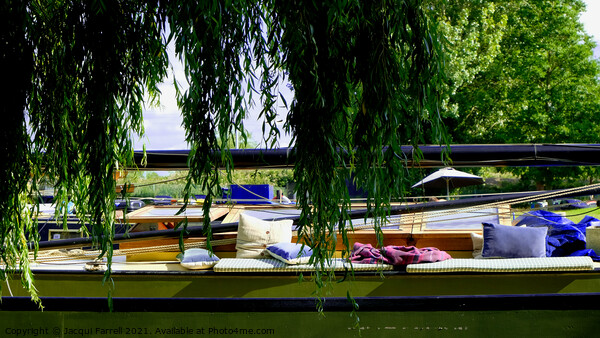 Boat Life at Ely Riverside  Framed Mounted Print by Jacqui Farrell