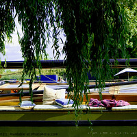 Buy canvas prints of Boat Life at Ely Riverside  by Jacqui Farrell