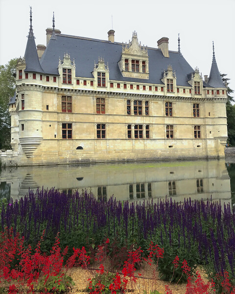 Chateau D'Azay le Rideau Loire Valley  Framed Mounted Print by Jacqui Farrell