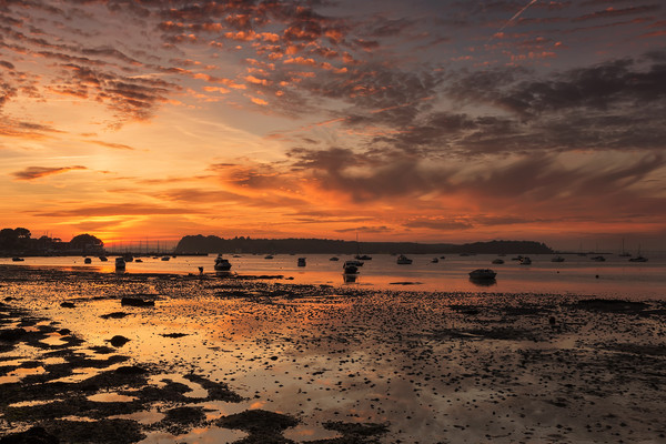 Sunset at Poole Harbour Framed Print by Jennie Franklin