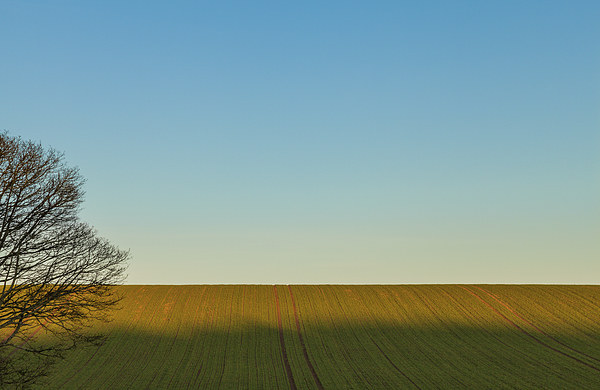 Land and Sky Canvas print by Gary Finnigan