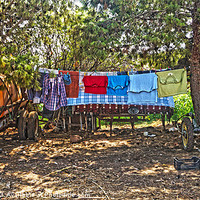 Buy canvas prints of Farmyard washing Line by Digby Merry