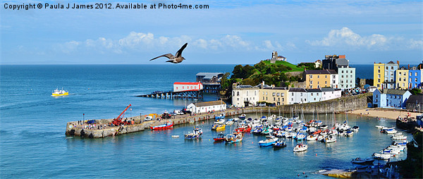 Giant Seagull flying over Tenby Harbour Canvas print by Paula J James
