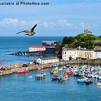 Buy canvas prints of Giant Seagull flying over Tenby Harbour by Paula J James