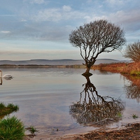 Buy canvas prints of Kenfig National Nature Reserve by Paula J James