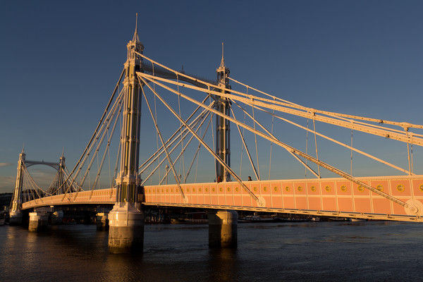 The Albert Bridge London Canvas print by David Pyatt
