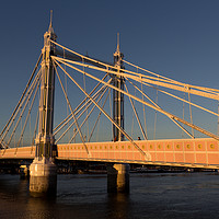 Buy canvas prints of The Albert Bridge London by David Pyatt