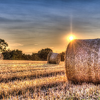 Buy canvas prints of  A Summers Evening Farm by David Pyatt