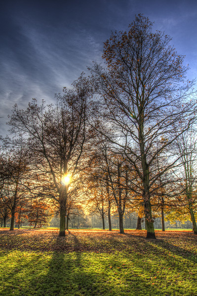 Autumn in London Framed Print by David Pyatt