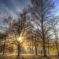 Buy canvas prints of Autumn in London by David Pyatt