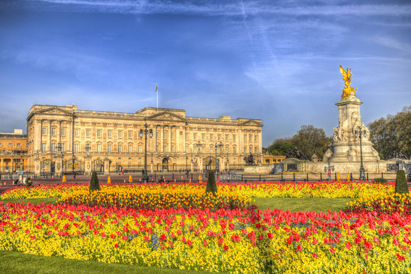 Buckingham Palace London Framed Mounted Print by David Pyatt