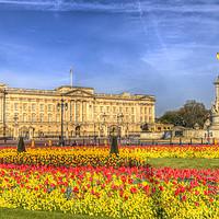 Buy canvas prints of Buckingham Palace London by David Pyatt