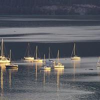 Buy canvas prints of Lake Mondsee Boats  by David Pyatt