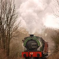 Buy canvas prints of Tanfield Express by eric carpenter