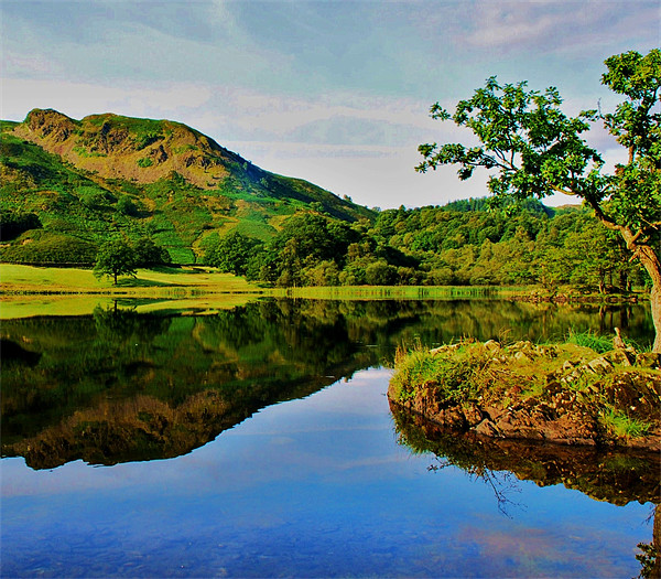 Rydal Reflect Canvas print by eric carpenter