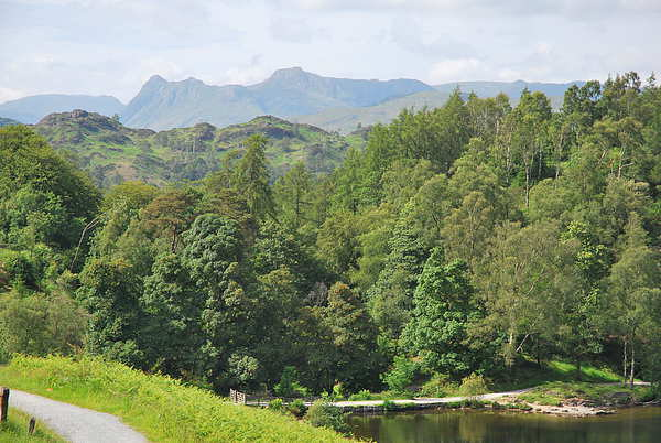 langdales from tarn hows Canvas print by eric carpenter