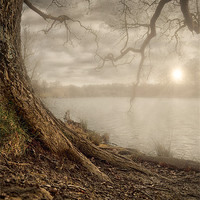 Buy canvas prints of MOTE PARK SUNSET by Art Exclusive