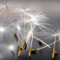 Buy canvas prints of  dancing dandelion heads by susan davies