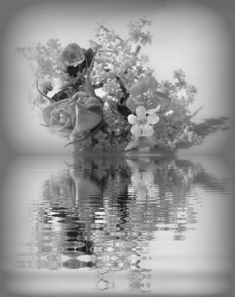 pretty reflections Print by sue davies
