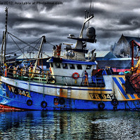 Buy canvas prints of Coming in to land by jane dickie