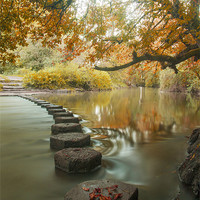 Buy canvas prints of Stepping stones 1 by Clive Eariss