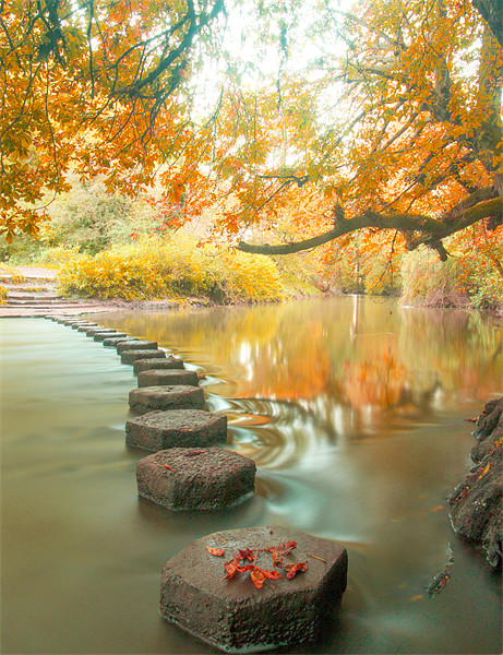 Box Hill Stepping Stones Canvas print by Clive Eariss