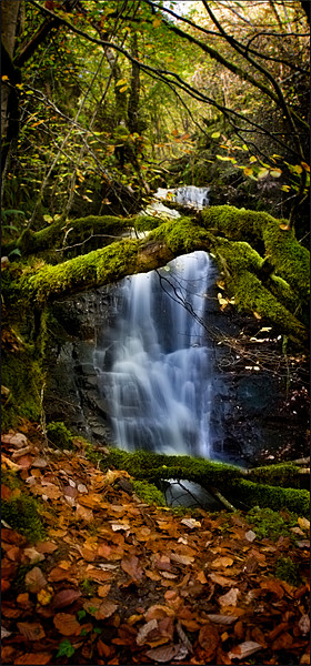 Waterfall at Reelig Canvas print by Macrae Images
