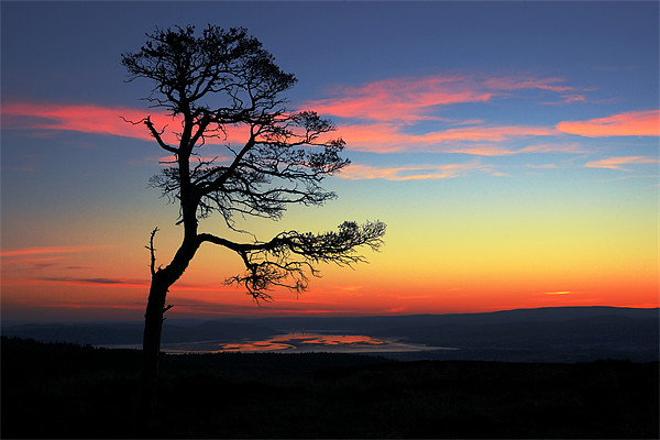 The Beauly Firth Canvas print by Macrae Images