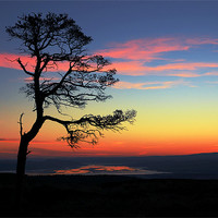 Buy canvas prints of The Beauly Firth by Macrae Images
