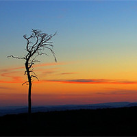 Buy canvas prints of Twilight by Macrae Images