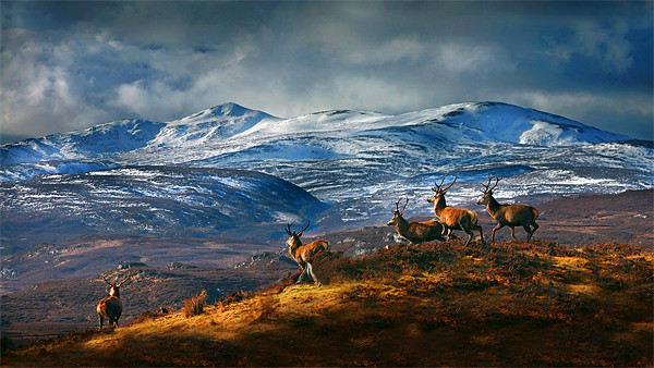 Above Strathglass Canvas print by Macrae Images