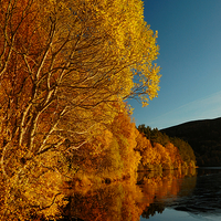 Buy canvas prints of Loch Laide by Macrae Images