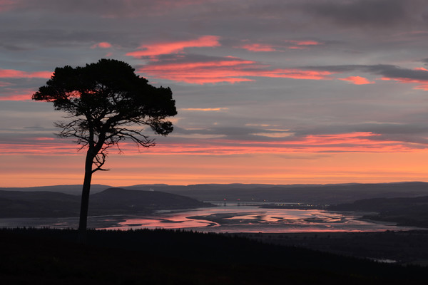 Daybreak Above the Beauly Firth and Inverness  Canvas print by Macrae Images