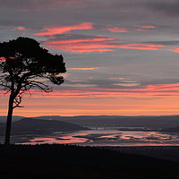 Buy canvas prints of Daybreak Above the Beauly Firth and Inverness  by Macrae Images