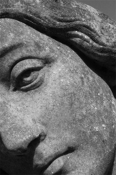 Stone Face Canvas Print by Adrian Wilkins