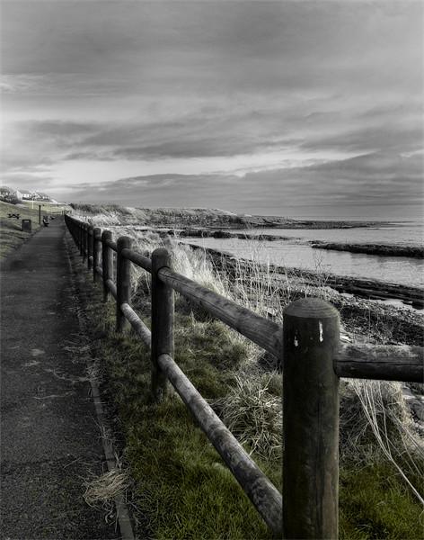 Seaside Path Canvas print by Fraser Hetherington