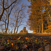 Buy canvas prints of Autumn at Kinnoull by Fraser Hetherington