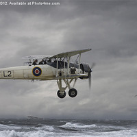 Buy canvas prints of Fairey Swordfish - Hide and Seek by Pat Speirs