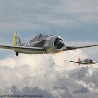 Buy canvas prints of Fw 190 - Butcher Bird by Pat Speirs