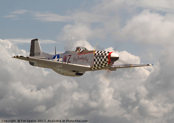 P51 Mustang - WW2 Classic Icon Canvas print by Pat Speirs