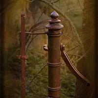 Buy canvas prints of Old Gatepost by LIZ Alderdice