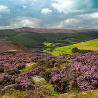 Buy canvas prints of Ladybower by David Tyrer